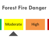 Forest Fire Danger