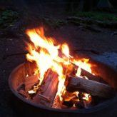 Forest Fire Danger